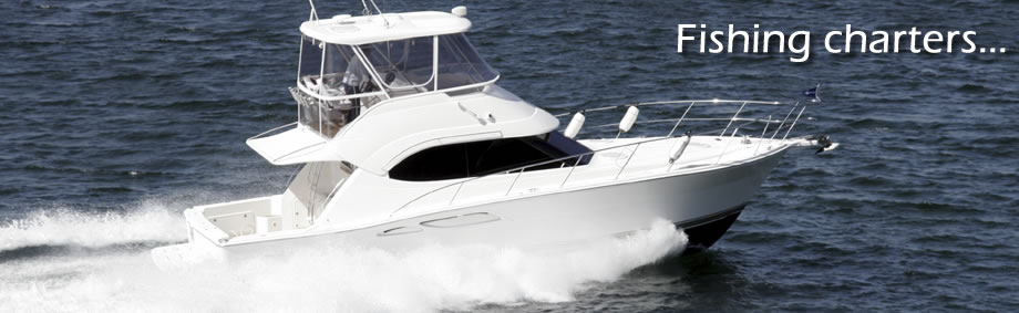 marine website design sport fishing charter guides boat